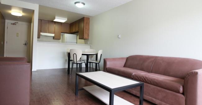 Apartment List Furniture Fascinating Living Room Loft Apartment Furniture Design Contain